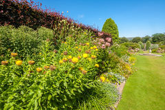 Beautiful landscaped summer garden Royalty Free Stock Image