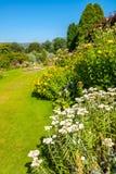 Beautiful landscaped summer garden Stock Photos