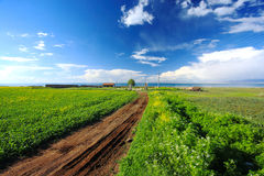 Beautiful Landscapes. With fields and meadows,QingHai,West China Stock Photos