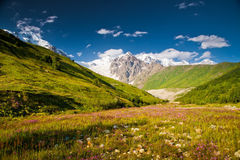Beautiful landscapes stock photography
