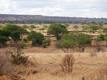 Beautiful landscapes of Africa Royalty Free Stock Images