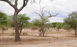 Beautiful landscapes of Africa Stock Photo
