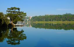 Landscapes of Da Lat city. Beautiful landscapes of Da Lat city at morning, pine tree and small bridge reflect on water, scenery in green, calm, this place is Stock Photo