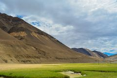 Open green land with mountains in Ladakh royalty free stock photo
