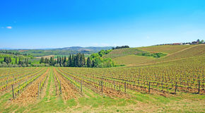 Beautiful Tuscany landscape in Italy . Beautiful landscapes of molar Tuscany in Italy Royalty Free Stock Photography