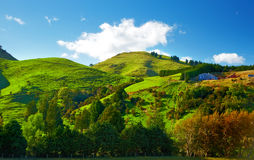 Beautiful landscapes of New Zealand Royalty Free Stock Image