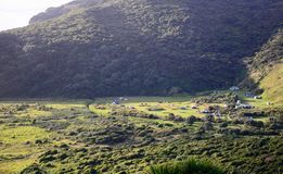 Camping ground – in aremote and secludedbush setting, among mountains overgrown with native plants. stock images