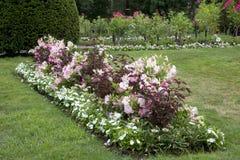 Beautiful  landscapes in public park Stock Photo