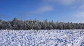 Beautiful landscapes of Russian European nature. Landscapes of all seasons. stock photography