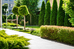 Beautiful landscaping with beautiful plants Stock Photos