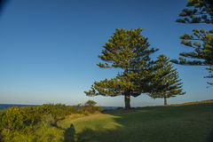 Beautiful lanscape of bermagui in Australia Stock Images