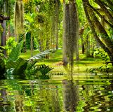 Beautiful lanscape garden Royalty Free Stock Photography