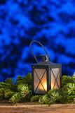 Beautiful lantern on fir branches Royalty Free Stock Photography