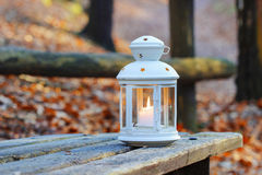 Beautiful lantern on wooden table in autumn forest Stock Image