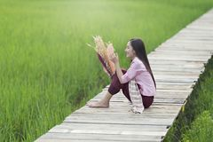 Beautiful Lao woman sitting alone with decorate flower on wooden bridge in green rice field stock photos
