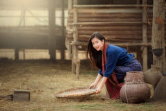 Beautiful Laos women in the Laos traditional dress. Beautiful Laos woman in the Laos traditional dress sitting are working in farm Stock Photos