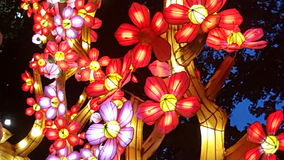 Beautiful Large Japanese Lantern floral Display Royalty Free Stock Photos