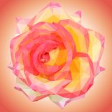 Beautiful large rose flower low poly vector illustration