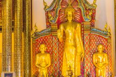 Beautiful large standing golden Buddha image with ceiling interior decoration, named Phra Chao Attarot at Wat Chedi Luang (temple royalty free stock photos