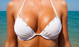 Beautiful large female breasts in a white swimsuit. Stock Image
