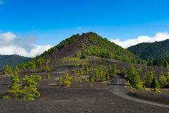 Beautiful lava landscape in La Palma Royalty Free Stock Images
