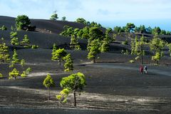 Beautiful lava landscape in La Palma Stock Photos
