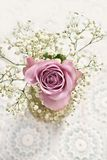 Beautiful lavender color rose with gypsophilla -top view Royalty Free Stock Photography