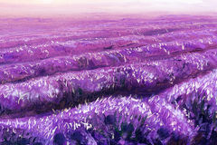 Beautiful lavender fields, painting detail, oil on canvas. Beautiful lavender fields, painting detail, oil on canvas Stock Photo
