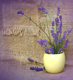 Beautiful lavender in yellow vase Stock Images