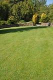 Beautiful lawn Royalty Free Stock Image