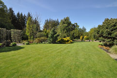 Beautiful lawn Stock Images