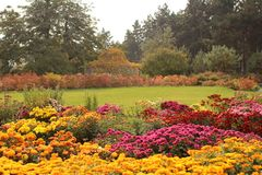 Beautiful lawn and flowerbed in autumn garden Royalty Free Stock Photo