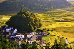 Terrace at guizhou china. The Beautiful layer of mountain and nature in rice field on terrace of Guizhou china Royalty Free Stock Photography