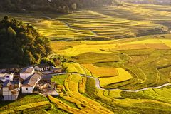 Terrace at guizhou china. The Beautiful layer of mountain and nature in rice field on terrace of Guizhou china Stock Image