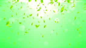 Fresh green leaves falling on green background. CG leaf confetti. Loop animation. stock illustration