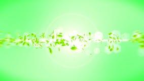 Fresh green leaves falling on green background. CG leaf confetti. Loop animation. Beautiful leaf. Green leaf falling. Leaf nature pattern on background. Summer stock illustration