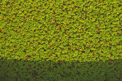 Little plant leaf pattern background with shadow royalty free stock images