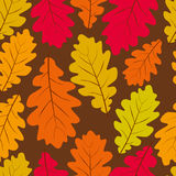 Beautiful leaves seamless pattern, vector natural endless backgr Stock Images