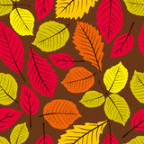 Beautiful leaves seamless pattern, vector natural endless backgr Stock Photos
