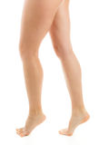 Beautiful legs. On a white background Stock Photography