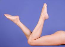 Beautiful legs Royalty Free Stock Image