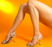 Beautiful legs. Studio image showing isolated close up of a females beautiful legs Royalty Free Stock Image