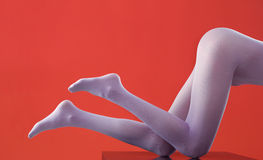 Beautiful legs in nice pantyhose Royalty Free Stock Photography
