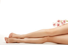 Beautiful legs of young woman royalty free stock photos
