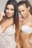 Beautiful lesbian couple Royalty Free Stock Photography