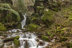 The beautiful Leshnishki Waterfall in deep forest, Belasitsa Mountain Stock Image