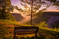 Beautiful Letchworth State Park in the early morning. Letchworth State Park, the Grand Canyon of the East shrouded in early morning fog Royalty Free Stock Images