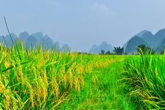 Beautiful Li river bamboo side Karst mountain landscape in Yangshuo Guilin Royalty Free Stock Photography