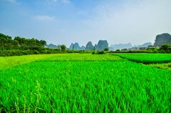 Beautiful Li river side Karst mountain Stock Image