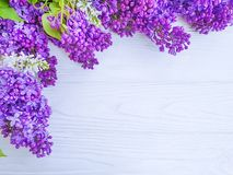 Free Beautiful Lilac Flower Blossom Summer Romantic Bouquet Summercard Season On White Wooden Background Frame Royalty Free Stock Image - 146508576